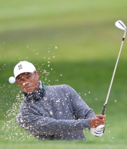 Tiger Woods Ready For Harding Park Showdown